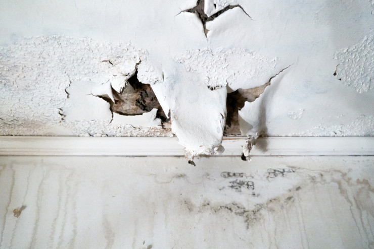 The First Steps You Must Take To Recover From Water Damage